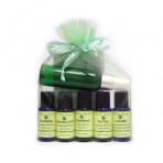 Aromatherapy Companion Pack (Pure Lavender, Peppermint, Tea Tree, Rosemary, Eucalyptus Essential Oils)