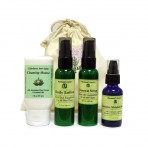 Renewal Collection Starter (Elderberry Cleansing Mousse, Renewal Daily Lotion, Renewal Serum, Intensive Moisture Serum)